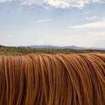 Jak mít jemné vlasy